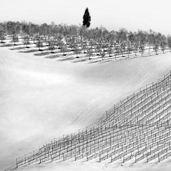 3° PREMIO VR Madeddu Bruno Paesaggio con neve2